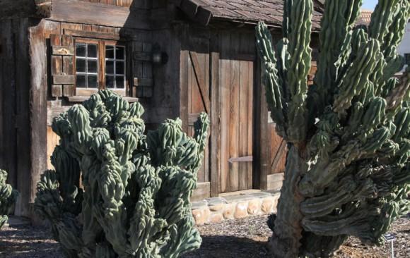 Wieghorst Cactus Garden 10